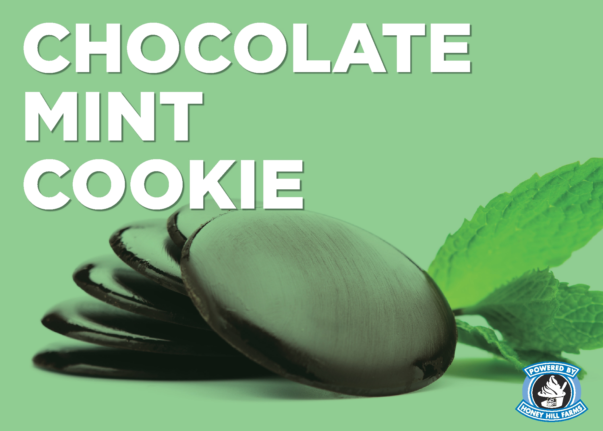 Chocolate Mint Cookie