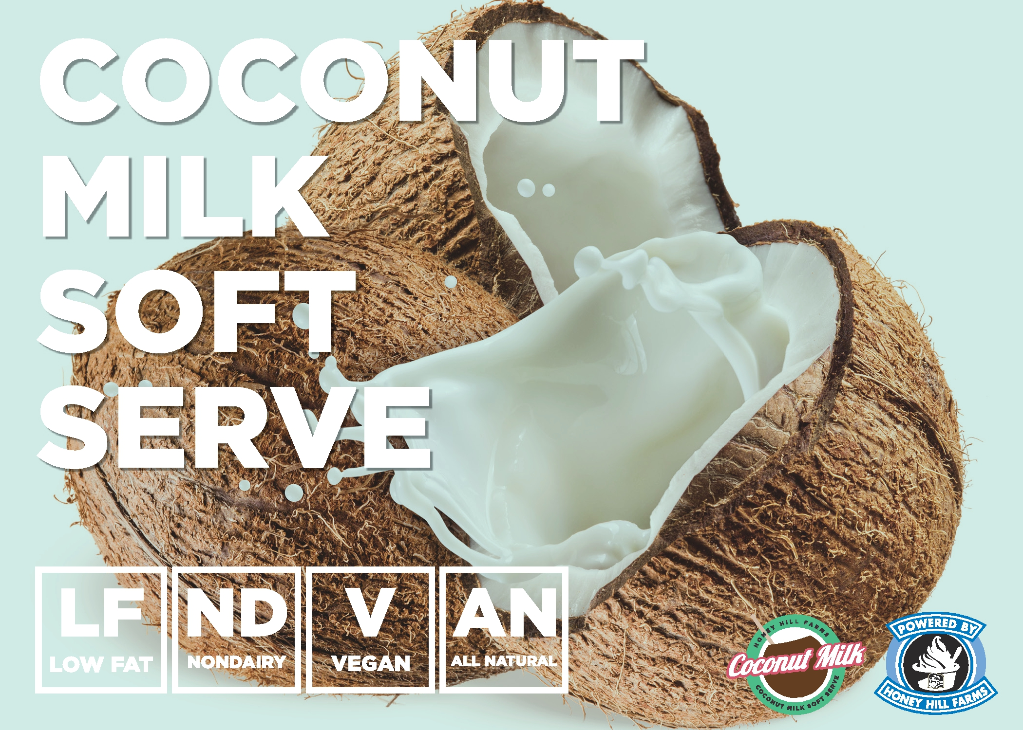 Coconut Milk Soft Serve